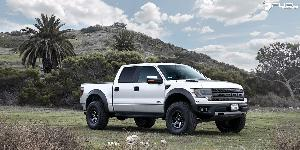 Ripper - D590 on Ford F-150 Raptor