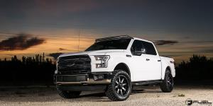 Ford F-150 with Fuel 1-Piece Wheels Nutz - D541