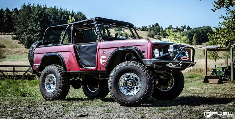 Ford Bronco Anza Beadlock - D116
