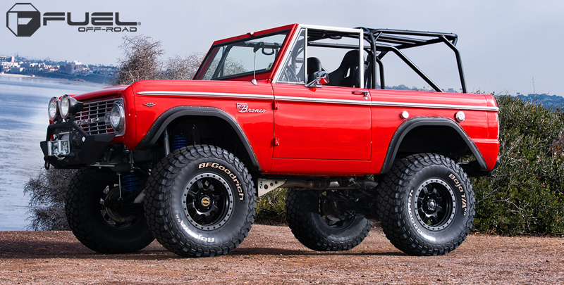 Ford Bronco Trophy - D551